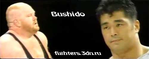 Ван Вейдер против Нобухико Такады (Бушидо)